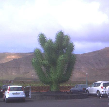 Eingang zum Kaktusgarten Jardín de Cactus