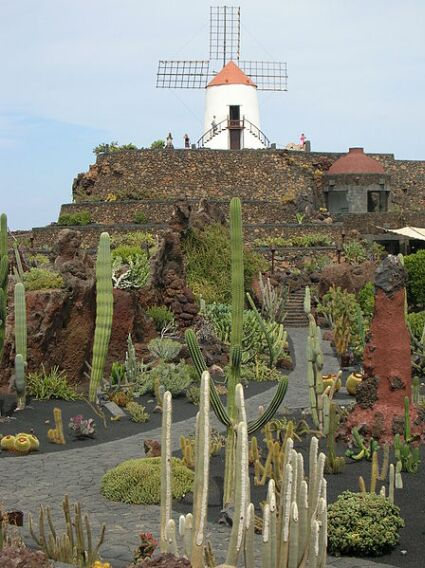 kaktusgarten Lanzarote - jardin de cactus