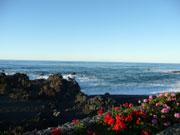 Cesar Manrique - Playa Jardin, Teneriffa, Puerto de la Cruz
