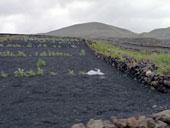 Vulkane, Lanzarote